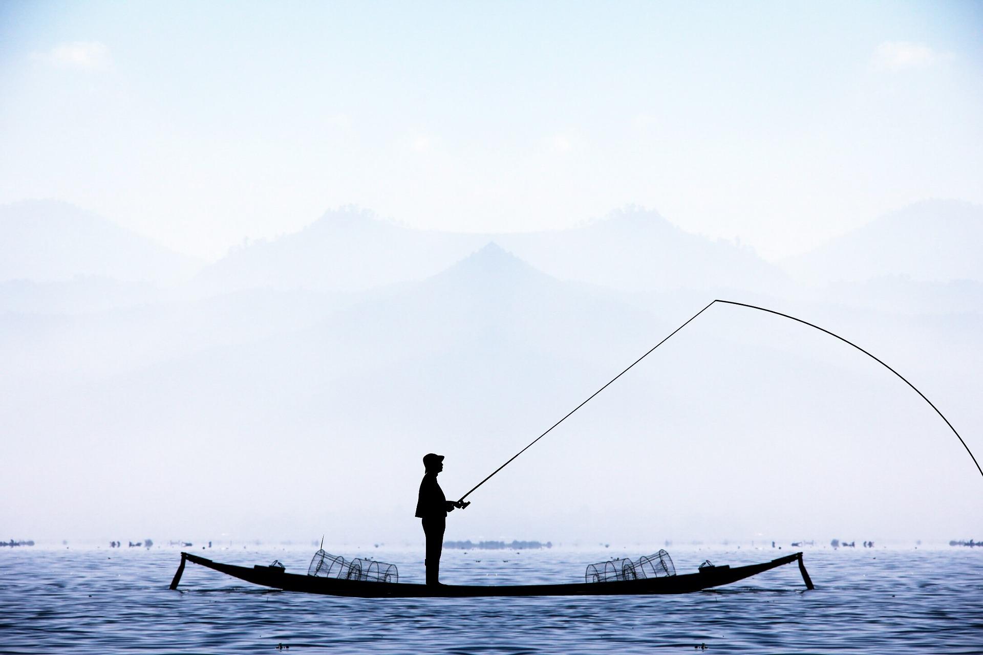 Fiske och historia